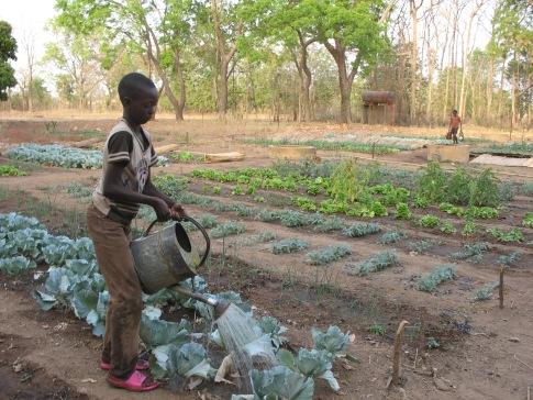 Burkina 214