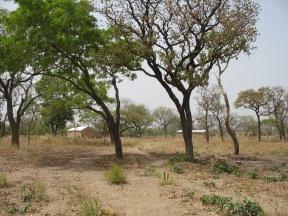 Burkina 347